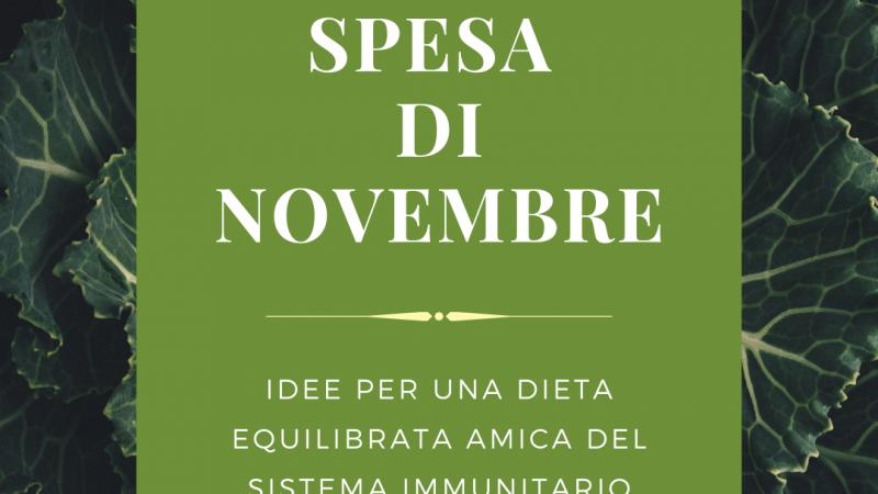 La spesa di novembre